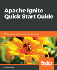 Apache Ignite Quick Start Guide