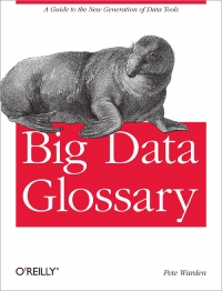 Big Data Glossary Free Ebook