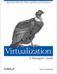 Virtualization: A Manager